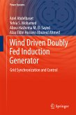 Wind Driven Doubly Fed Induction Generator (eBook, PDF)
