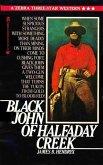Black John of Halfaday Creek (eBook, ePUB)