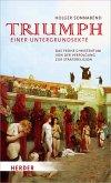 Triumph einer Untergrundsekte (eBook, ePUB)
