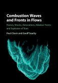 Combustion Waves and Fronts in Flows (eBook, PDF)