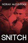 Snitch (eBook, ePUB)