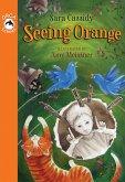 Seeing Orange (eBook, ePUB)