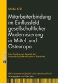 Mitarbeiterbindung im Einflussfeld gesellschaftlicher Modernisierung in Mittel- und Osteuropa (eBook, PDF)