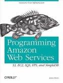 Programming Amazon Web Services (eBook, PDF)