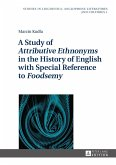 Study of Attributive Ethnonyms in the History of English with Special Reference to Foodsemy (eBook, ePUB)