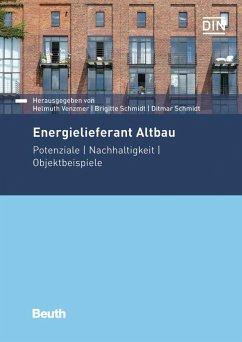 Energielieferant Altbau (eBook, PDF)