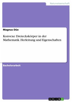 Konvexe Dreieckskörper in der Mathematik. Herleitung und Eigenschaften (eBook, PDF)