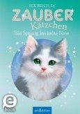 Zauberkätzchen - Ein Sprung ins kalte Nass (eBook, ePUB)