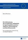 Die Vollstreckung des Europaeischen Haftbefehls im Spannungsfeld zwischen effektiver Strafverfolgung und Betroffenenschutz (eBook, ePUB)