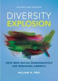 Diversity Explosion (eBook, ePUB)
