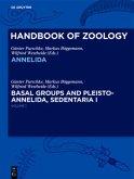 Annelida Basal Groups and Pleistoannelida, Sedentaria I