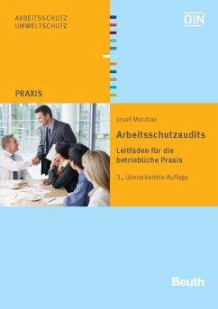 Arbeitsschutzaudits (eBook, PDF) - Merdian, Josef