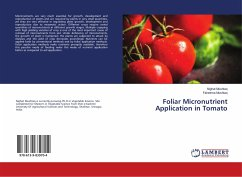 Foliar Micronutrient Application in Tomato