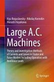 Large A.C. Machines (eBook, PDF)