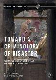 Toward a Criminology of Disaster (eBook, PDF)