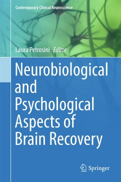Neurobiological and Psychological Aspects of Brain Recovery (eBook, PDF)