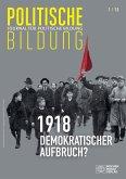1918 - neue Weltordnung und demokratischer Aufbruch? (eBook, PDF)