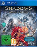 Shadows: Awakening (PlayStation 4)