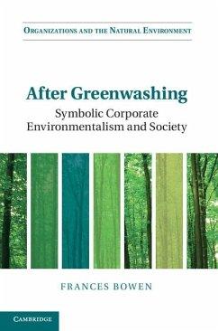 After Greenwashing (eBook, ePUB)