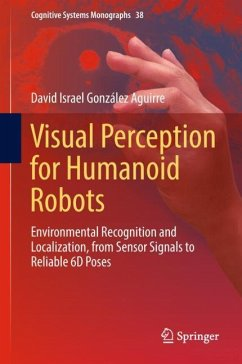 Visual Perception for Humanoid Robots