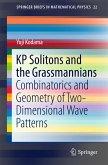 KP Solitons and the Grassmannians (eBook, PDF)