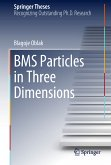 BMS Particles in Three Dimensions (eBook, PDF)