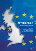 After Brexit (eBook, PDF)