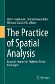 The Practice of Spatial Analysis (eBook, PDF)
