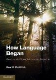 How Language Began (eBook, ePUB)