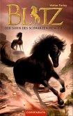 Der Sohn des schwarzen Hengstes / Blitz Bd.3 (eBook, ePUB)
