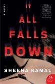 It All Falls Down (eBook, ePUB)