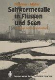 Schwermetalle in Flüssen und Seen als Ausdruck der Umweltverschmutzung (eBook, PDF)