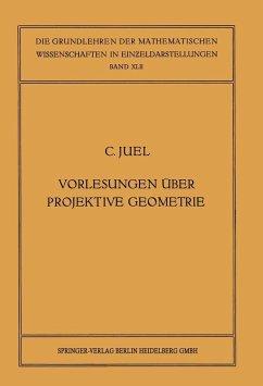 Vorlesungen über Projektive Geometrie (eBook, PDF) - Juel, Christian