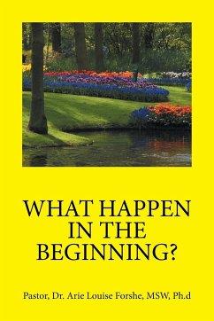 WHAT HAPPEN IN THE BEGINNING?