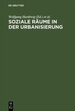 Soziale Räume in der Urbanisierung (eBook, PDF)