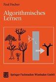 Algorithmisches Lernen (eBook, PDF)