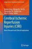 Cerebral Ischemic Reperfusion Injuries (CIRI) (eBook, PDF)