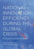 National Innovation Efficiency During the Global Crisis (eBook, PDF)
