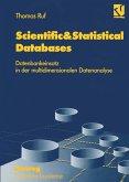 Scientific&Statistical Databases (eBook, PDF)