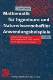Mathematik für Ingenieure und Naturwissenschaftler Anwendungsbeispiele (eBook, PDF)