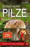 Einfach sicher Pilze sammeln (Mängelexemplar)