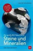 Der große BLV Naturführer Steine- und Mineralienführer (Mängelexemplar)