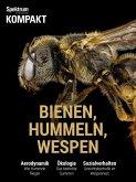 Spektrum Kompakt - Bienen, Hummeln, Wespen (eBook, PDF)