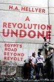 A Revolution Undone (eBook, ePUB)