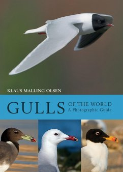Gulls of the World (eBook, PDF) - Malling Olsen, Klaus