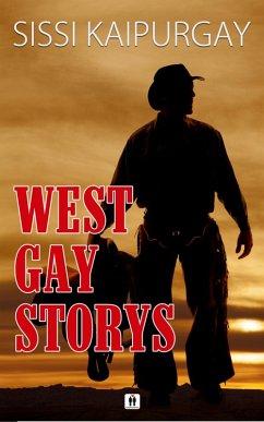 West Gay Storys (eBook, ePUB)