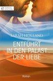 Entführt in den Palast der Liebe (eBook, ePUB)