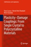 Plasticity-Damage Couplings: From Single Crystal to Polycrystalline Materials (eBook, PDF)