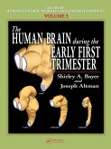 The Human Brain During the Early First Trimester (eBook, PDF)