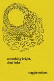 Something Bright, Then Holes (eBook, ePUB)